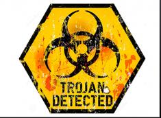 Trojan.Zlob.q