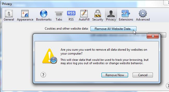 safary privacy remove all website data