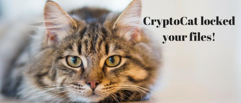 CryptoCat Ransomware