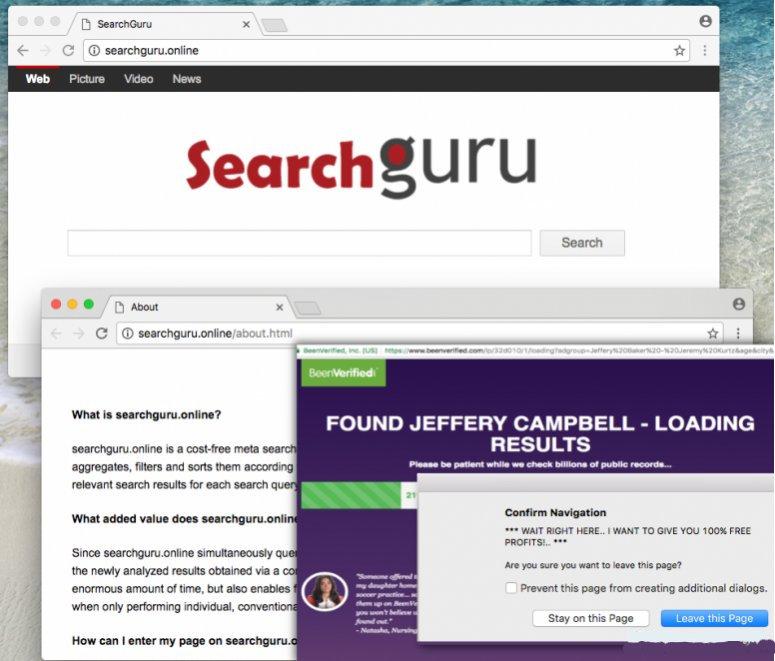 delete SearchGuru.online