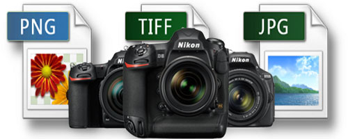 Nikon Photo Recovery