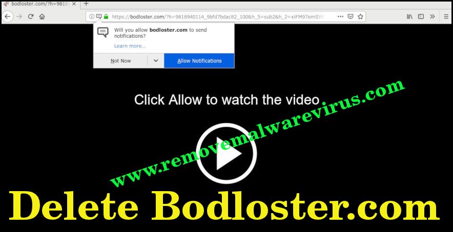 Elimina Bodloster.com