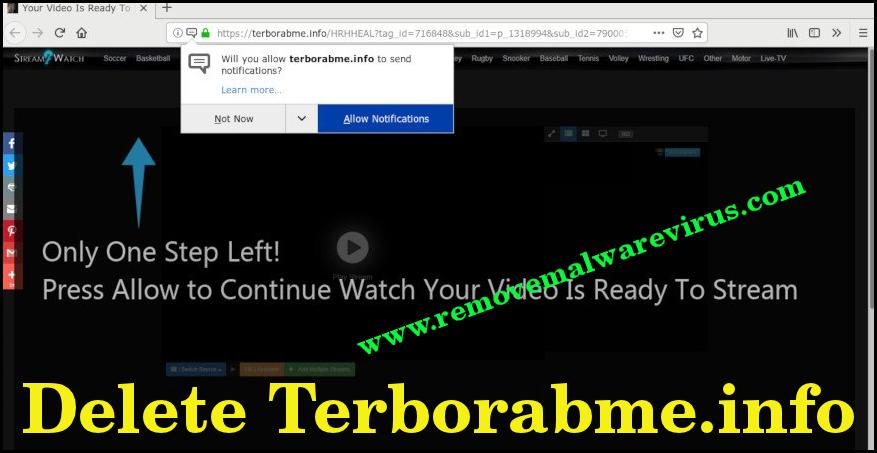 Eliminar Terborabme.info